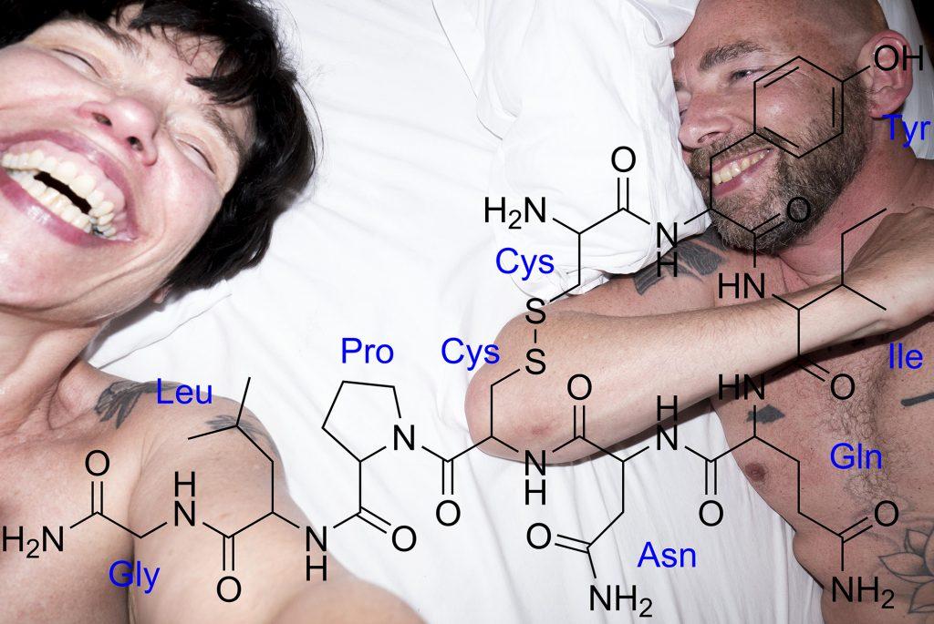 seks verbindt, dat komt onder meer door de oxytocine die vrijkomt bij seks